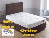 Ortho Ace