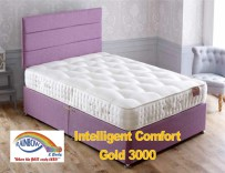Intelligent comfort Gold 3000