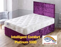 Intelligent Comfort Platinum 5000